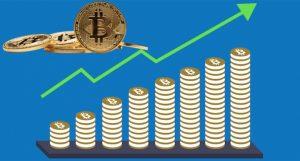 Bitcoin Boğa Koşusu