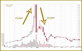 Kripto Para Borsalarında Pump Dump Ne Anlama Gelir
