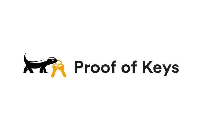 Proof of Keys'e Karşı Yatırımcılar Ne Yapmalı